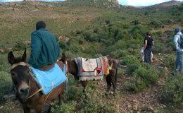 Une randonnée culturelle pour découvrir Debdou et son histoire